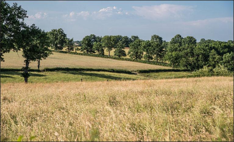 Lettre pastorale : Espérer au cœur des mutations du monde rural